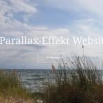 Demo Parallax Website